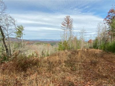 Residential Lots & Land For Sale: Us 19 Highway