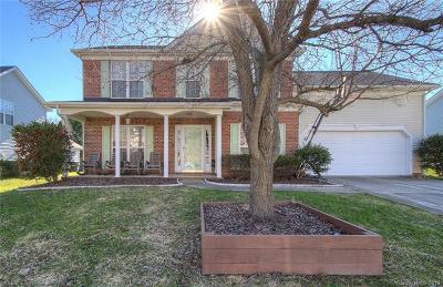 Indian Trail Single Family Home For Sale: 1013 Enderbury Drive