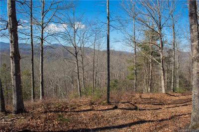 Marshall Residential Lots & Land For Sale: 9999 Raccoon Run #24