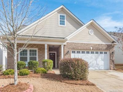 Tega Cay Single Family Home For Sale: 2481 Bergamot Street