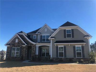 Fort Mill Single Family Home For Sale: 435 Dudley Drive #66