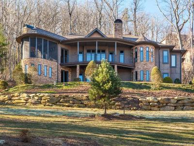 Buncombe County, Haywood County, Henderson County, Madison County Single Family Home For Sale: 86 Willow Farm Road