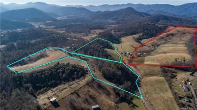 Buncombe County, Haywood County, Henderson County, Madison County Residential Lots & Land For Sale: 99999 Don Felmet Road