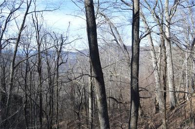 Buncombe County, Haywood County, Henderson County, Madison County Residential Lots & Land For Sale: Jerdon Road