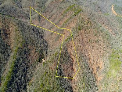 Buncombe County, Haywood County, Henderson County, Madison County Residential Lots & Land For Sale: 99999 Echota Drive