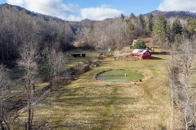 Buncombe County, Haywood County, Henderson County, Madison County Single Family Home For Sale: 49 Pokeweed Lane