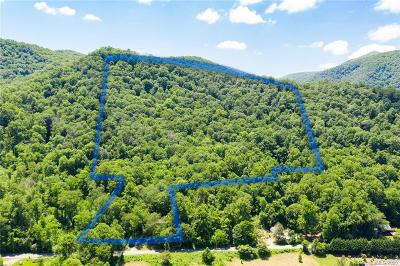 Buncombe County, Haywood County, Henderson County, Madison County Residential Lots & Land For Auction: Cruso Road