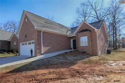 Statesville Single Family Home For Sale: 111 Sweet Oaks Lane