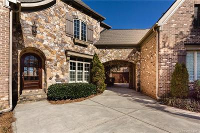 Charlotte, Gastonia, Tega Cay, Fort Mill, Lake Wylie, York Single Family Home For Sale: 12635 Preservation Pointe Drive