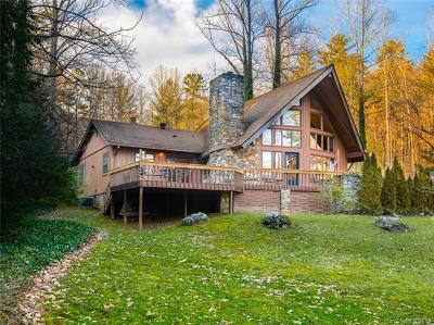 Buncombe County Single Family Home For Sale: 63 Hawks Landing