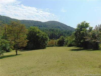 Buncombe County, Haywood County, Henderson County, Madison County Single Family Home For Sale: 350 Chunns Cove Road