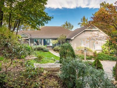 Buncombe County, Haywood County, Henderson County, Madison County Single Family Home For Sale: 125 Berry Creek Drive