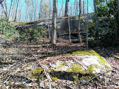 Buncombe County Residential Lots & Land For Sale: 99999 Bee Tree Road