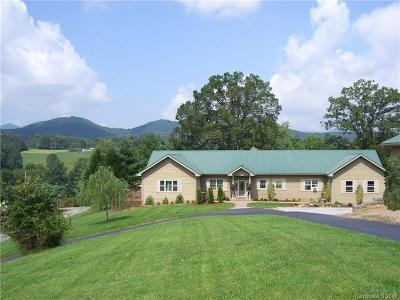 Buncombe County Commercial For Sale: 64 Laurel Cove Road