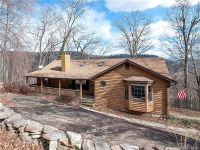 Hendersonville Single Family Home For Sale: 44 Laurel Creek Drive