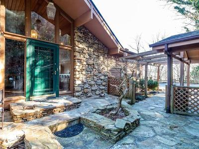 Hendersonville Single Family Home For Sale: 480 Davis Mountain Road