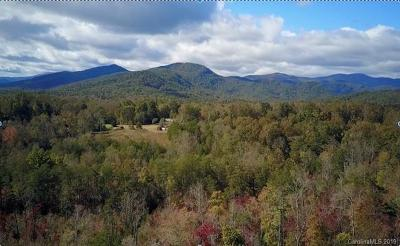 Bat Cave, Chimney Rock, Lake Lure, Gerton, Black Mountain, Mill Spring, Rutherfordton, Columbus, Tryon, Saluda, Union Mills, Hendersonville Single Family Home For Sale: Bills Creek Road