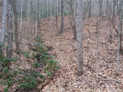 Buncombe County, Haywood County, Henderson County, Madison County Residential Lots & Land For Sale: Justice Trail