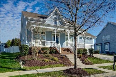 Davidson Single Family Home For Sale: 12515 Robert Walker Drive #98
