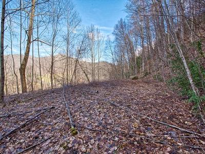 Haywood County Residential Lots & Land For Sale: Lewis Lane #22+Acres