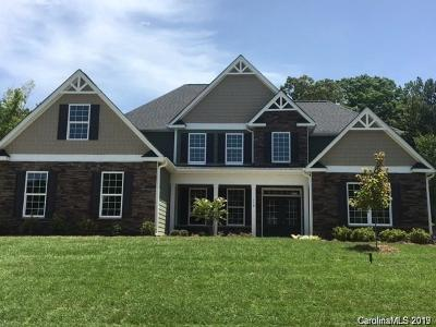 Mooresville Single Family Home For Sale: 143 Butler Drive #7