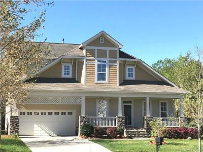 Tega Cay Single Family Home For Sale: 399 Shoreline Parkway