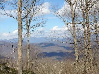 Buncombe County Residential Lots & Land For Sale: Little Mountain Road #19