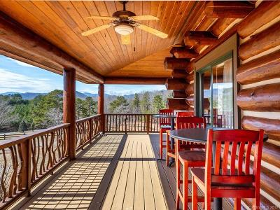 Bat Cave, Chimney Rock, Lake Lure, Gerton, Black Mountain, Mill Spring, Rutherfordton, Columbus, Tryon, Saluda, Union Mills, Hendersonville Single Family Home For Sale: 1054 Rainbow Rapids Road