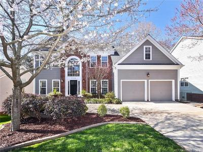 Charlotte Single Family Home For Sale: 3124 Old Chapel Lane