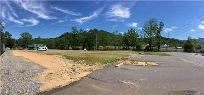 Buncombe County Commercial For Sale: 141 S Richardson Boulevard