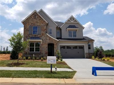 Fort Mill Single Family Home For Sale: 1040 Arden Mill Drive