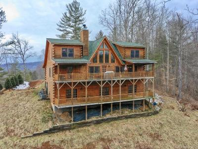 Single Family Home For Sale: 1133 High Peak Drive