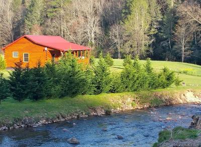 Marshall NC Single Family Home For Sale: $359,000