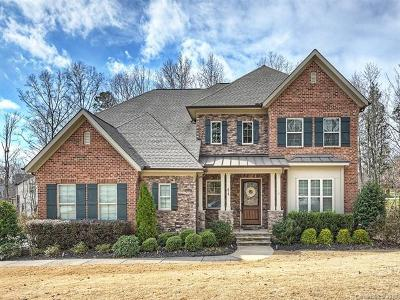 Fort Mill Single Family Home For Sale: 618 Chase Court