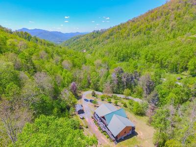 Buncombe County, Haywood County, Henderson County, Madison County Single Family Home For Sale: 425 Poverty Branch Road