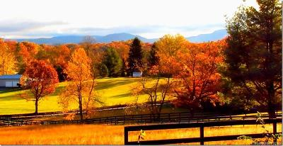 Buncombe County Residential Lots & Land For Sale: 17 Old Bishop Farm Road