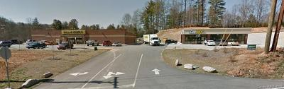 Henderson County Commercial For Sale: 25 Westside Village Road