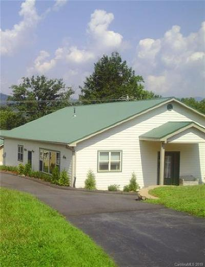 Buncombe County Commercial For Sale: 62 Laurel Cove Road