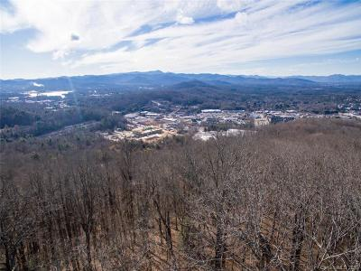 Buncombe County Residential Lots & Land For Sale: Old Forest Drive #2C