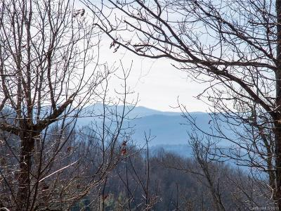 Buncombe County Residential Lots & Land For Sale: 44 Giffords Lane #17