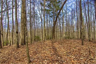 Bat Cave, Black Mountain, Chimney Rock, Columbus, Gerton, Lake Lure, Mill Spring, Rutherfordton, Saluda, Tryon, Union Mills Residential Lots & Land For Sale: Lot #14 Rhododendron Drive