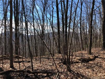 Bat Cave, Black Mountain, Chimney Rock, Columbus, Gerton, Lake Lure, Mill Spring, Rutherfordton, Saluda, Tryon, Union Mills Residential Lots & Land For Sale: 1169 State Road