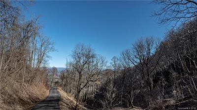 Buncombe County Residential Lots & Land For Sale: 99999 Cave Summit Trail #99
