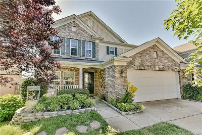 Charlotte NC Single Family Home For Sale: $264,900