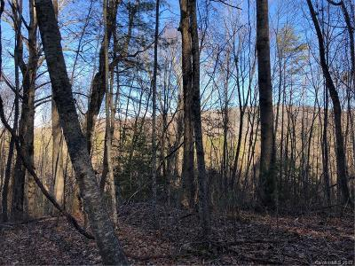 Buncombe County, Haywood County, Henderson County, Madison County Residential Lots & Land For Sale: 9999 Brush Creek Road