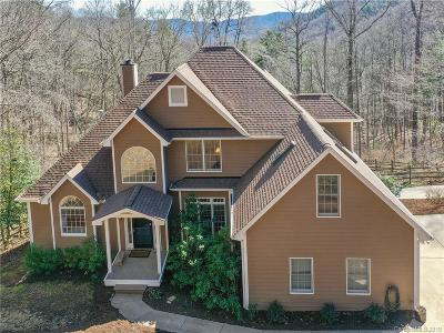 Asheville Single Family Home For Sale: 289 Independence Boulevard
