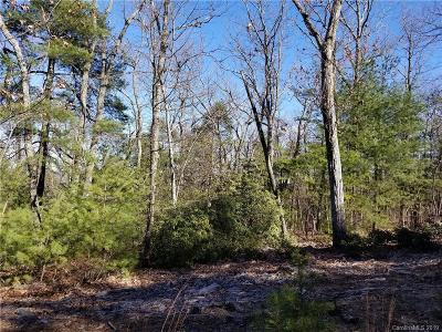 Residential Lots & Land For Sale: Sleepy Hollow Road #42