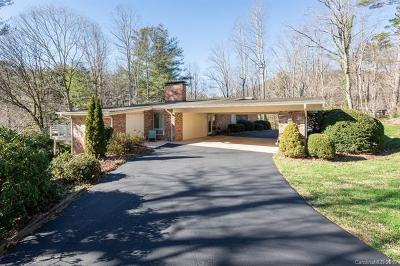 Asheville Single Family Home For Sale: 160 Elk Mountain Scenic Highway