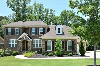 Fort Mill Single Family Home For Sale: 654 Chase Court