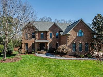 Waxhaw Single Family Home For Sale: 9025 Unbridle Lane